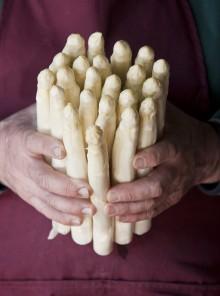 Come cucinare gli asparagi bianchi