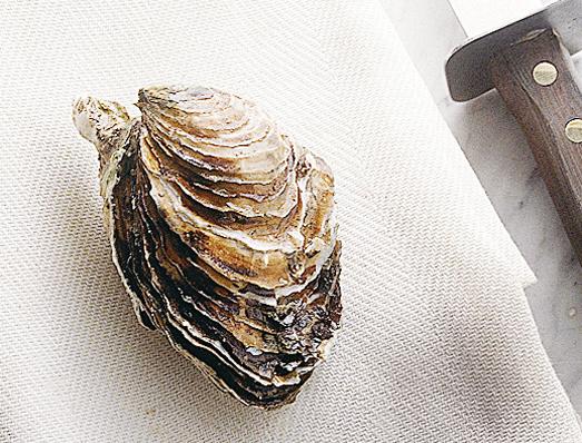 Aprire ostriche a crudo Sale&Pepe