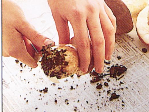Pulire funghi porcini Sale&Pepe