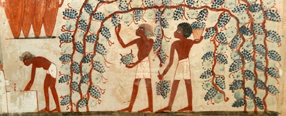 Tomba di Nakht: mostra ad Alba