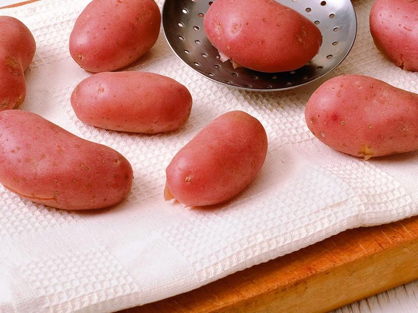bocconcini-croccanti ricetta