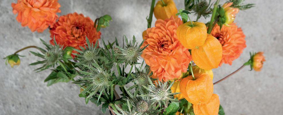 bouquet_noci_dalie