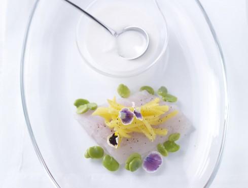 branzino-marinato-con-centrifuga-di-mela-verde