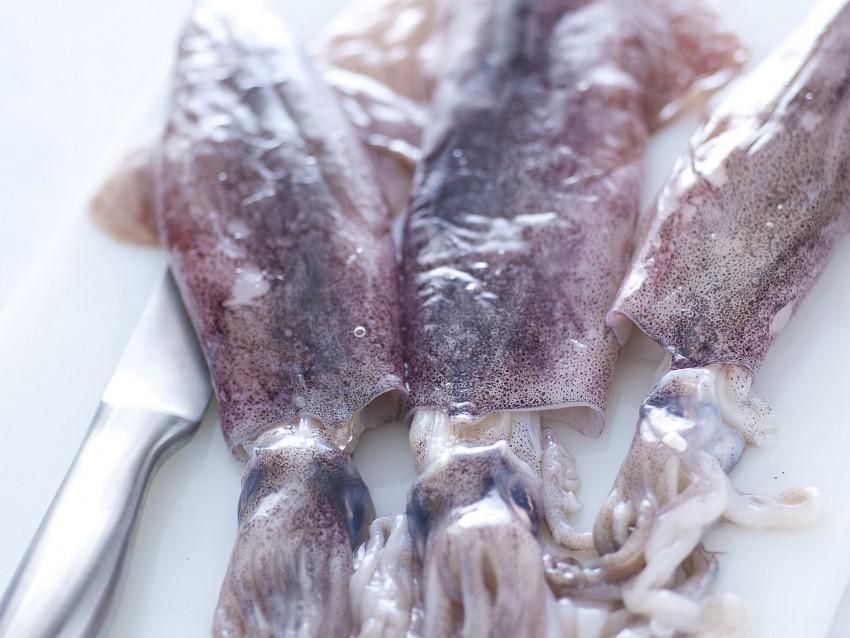 calamari-alla-romana