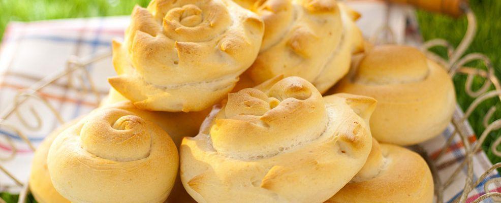 chiocciole-al-parmigiano