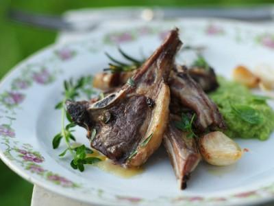 costolette di agnello glassate al miele con erbe aromatiche e marò di fave ricetta