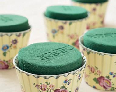 cupcake_fioriti_01