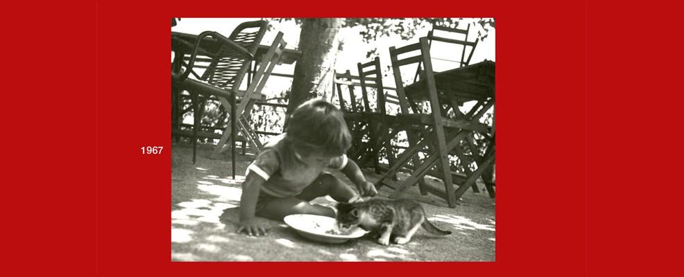 Mostra - Gli affetti straordinari 1967