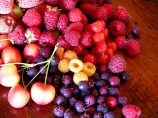 Frutta Lamponi Sale&Pepe