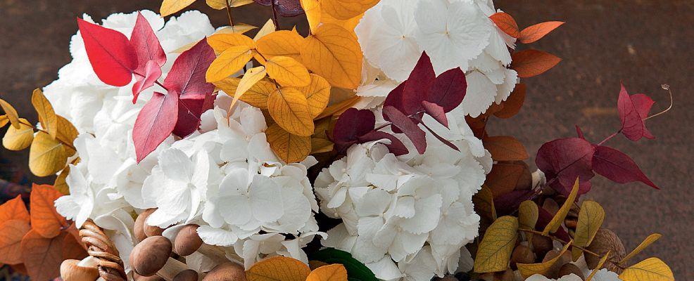 sinfonia_autunno