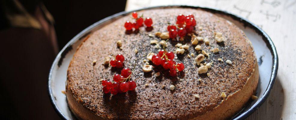 torta-di-papavero-e-nocciole