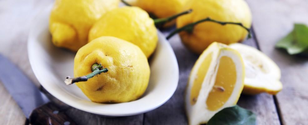 Limoni della costiera amalfitana (Foto © Matassa, Mario /the food passionates /Corbis)