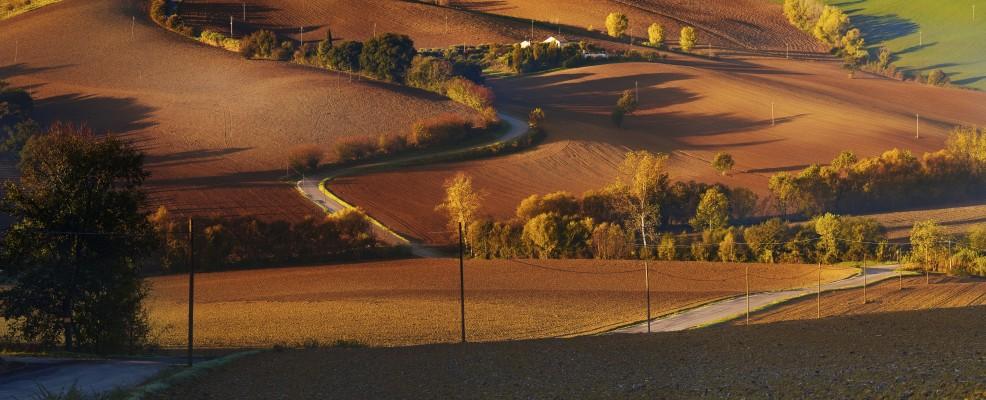 Colline vicino Montelupone (Foto © Maurizio Rellini /Sopa /Corbis)