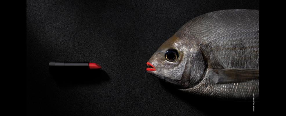 2013, Patrick Rougereau, Le baiser va laisser des traces