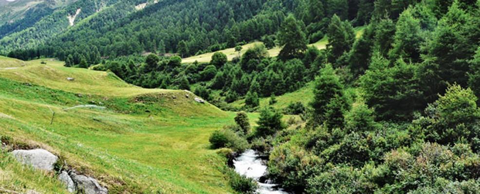 il rio Puni nella Valle di Planol