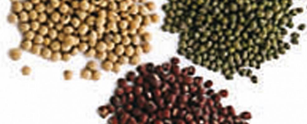 Soia, piselli e altri legumi. I fitoestrogeni contenuti in questi alimenti rassodano, tonificano e uniformano il colorito.