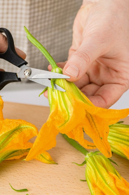 fiori di zucca Sale&Pepe step