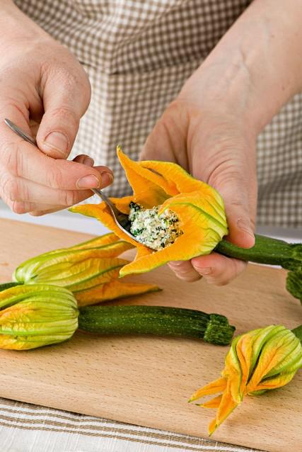 immagine fiori di zucca Sale&Pepe