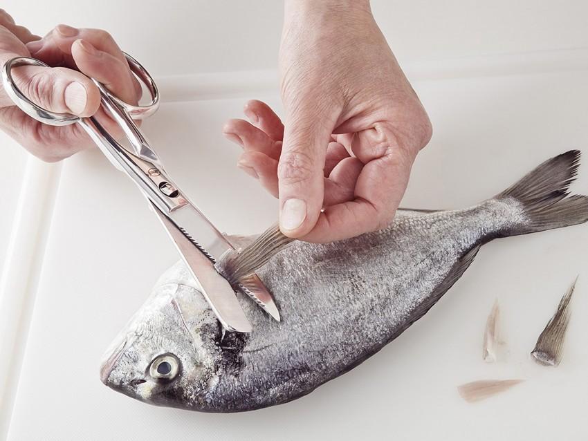Come si usano le forbici in cucina   Sale&Pepe