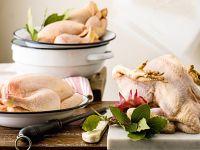 pollo gallina e galletto Sale&Pepe