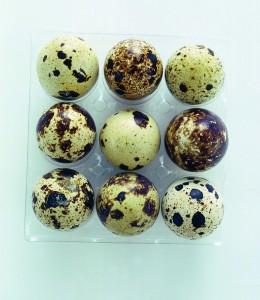Uova di quaglia Sale&Pepe