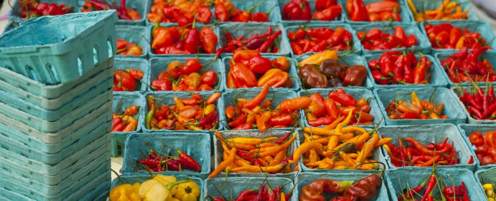 mixed chillies for sale in the Union Square farmers' market, NYC