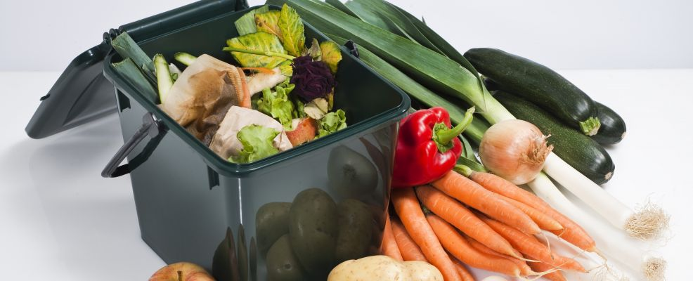 Compost container and vegetables