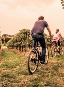 Franciacorta, viaggio sensoriale tra vino e cibo