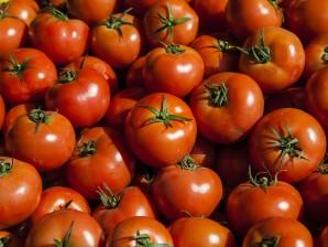 Fresh tomatoes Carmel Market