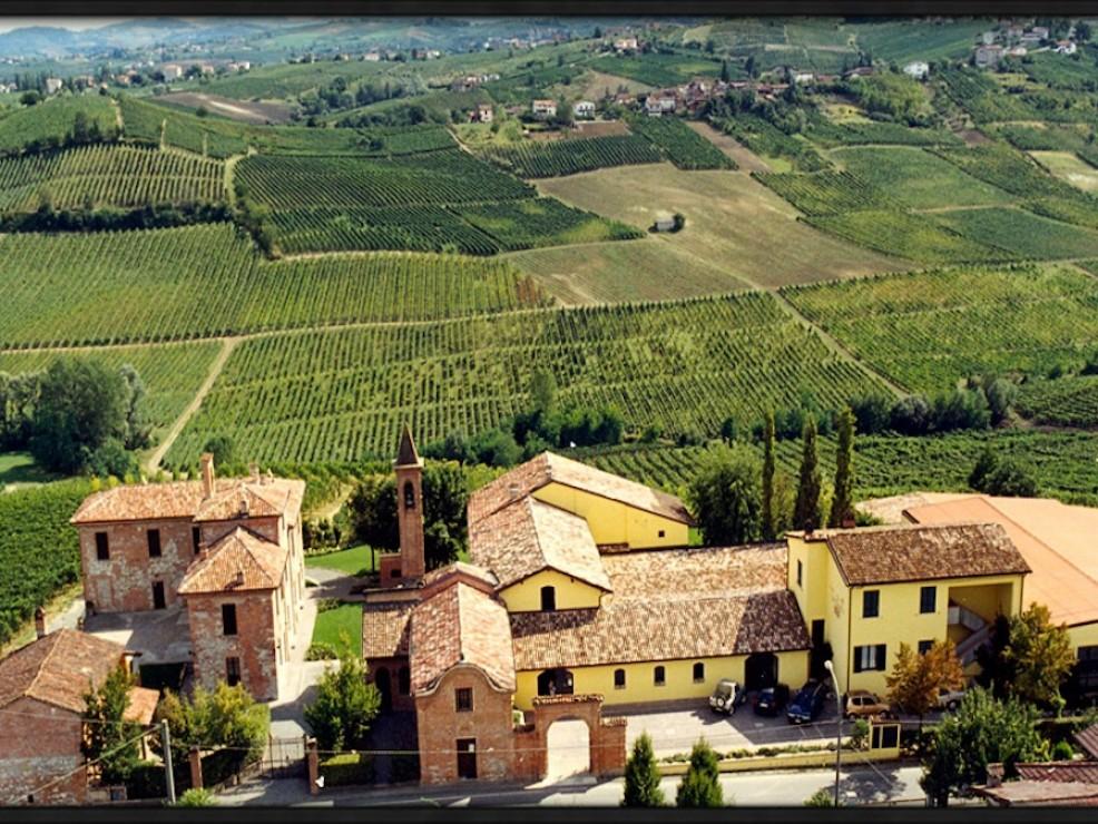 Tenuta Torre Fornello, panoramica delle vigne