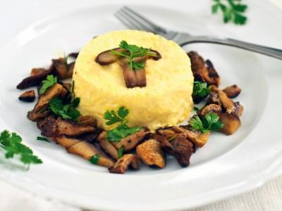 tartra-funghi
