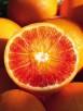 arancia-rossa-sicilia1