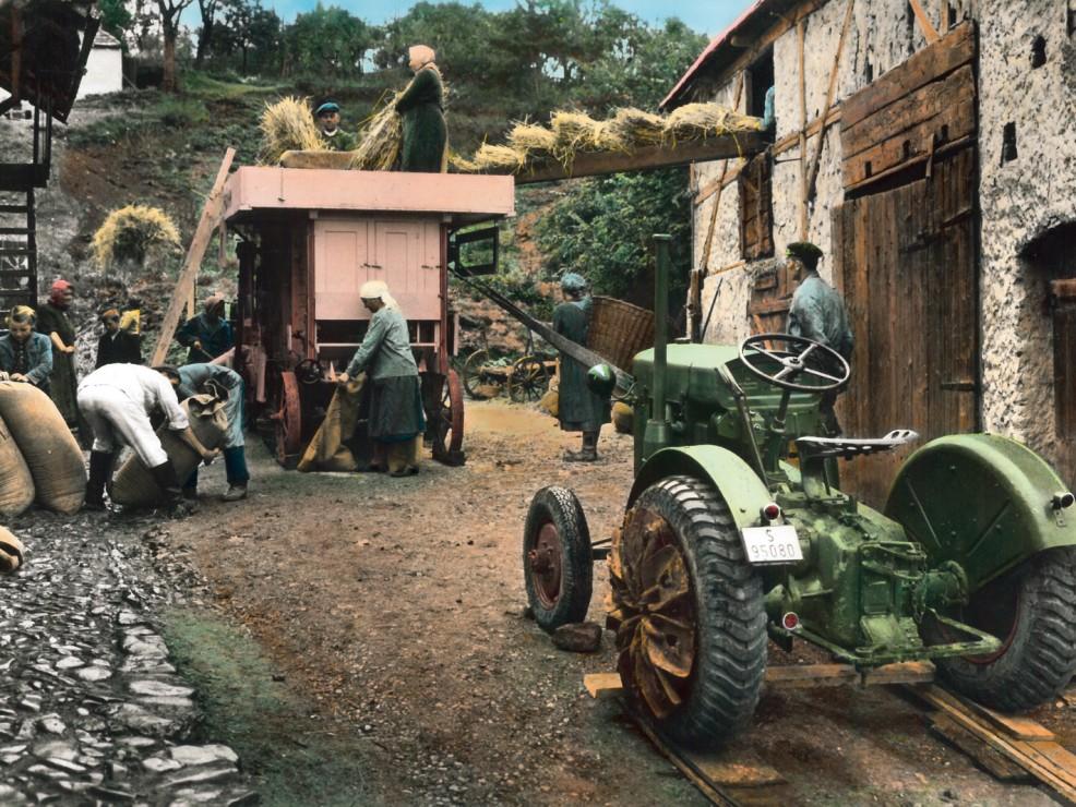 foto lavoratori del cibo3