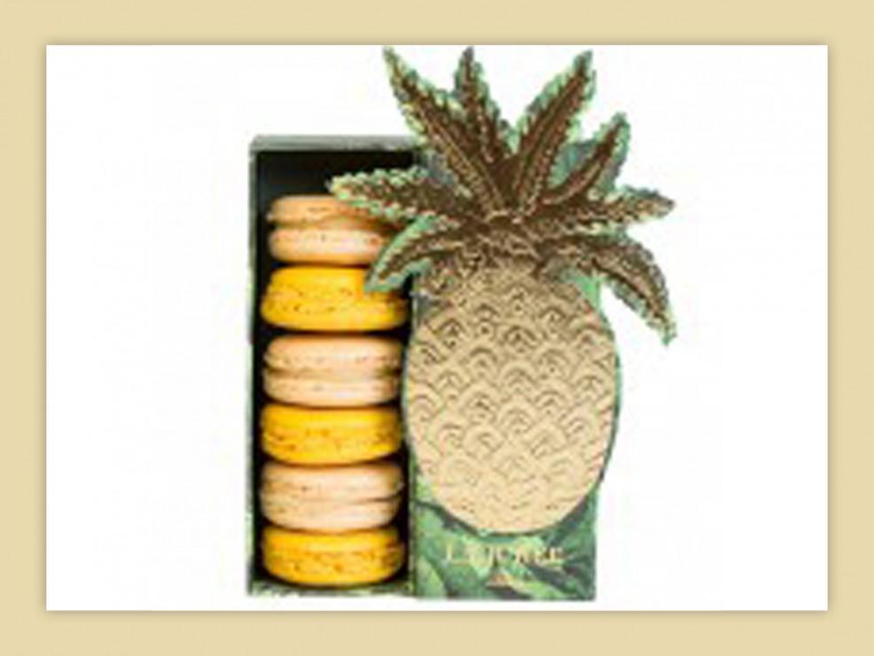Macarons in confezione regalo di Ladurée