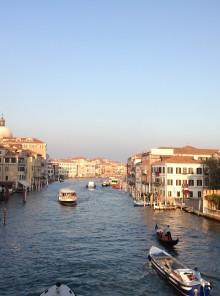 Venezia e le erbe di laguna