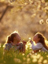 Young Girls Play in an Orchard