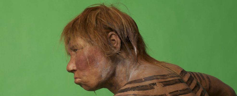 Head and shoulders of a sculpted model of a female Neanderthal.