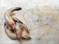 Raw shrimps on marble background