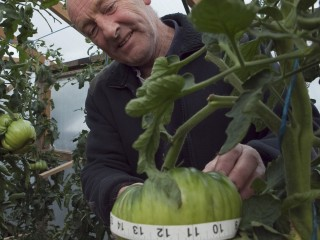 UK - Agriculture - Giant vegetable growers