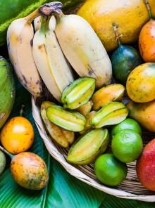 A Expo frutta esotica Made in Italy