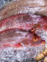 Pesce in vendita