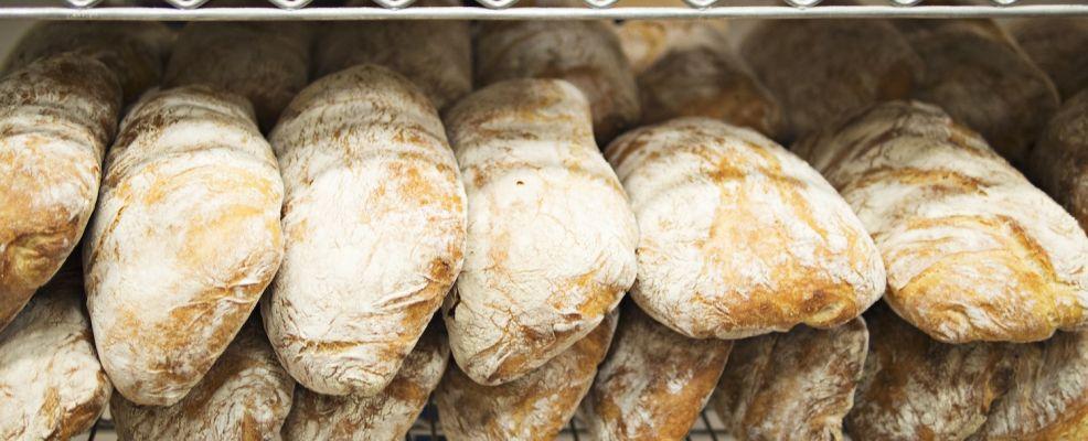 Fresh bread on rack