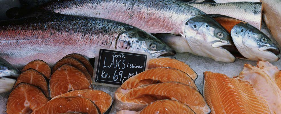Salmone norvegese al mercato di Bergen, Norvegia