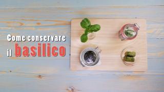 Come conservare il basilico: il video