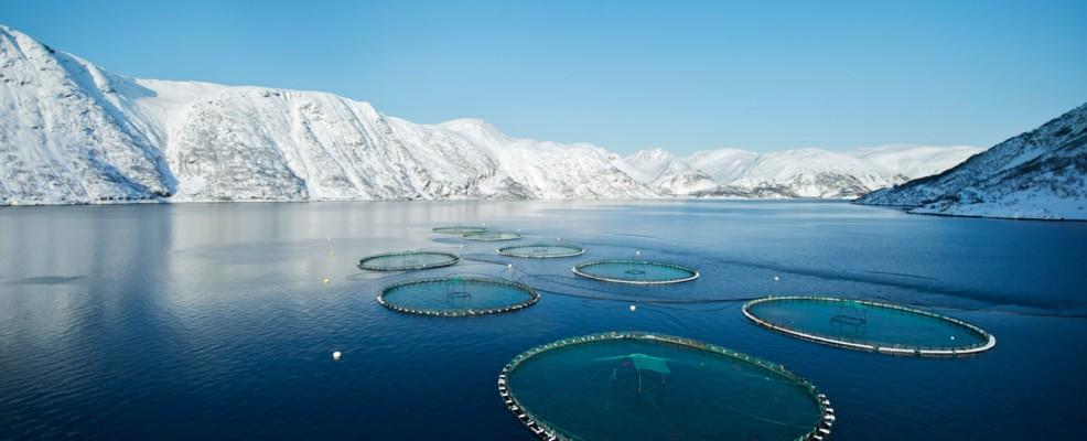norvegia-paesaggio8jpg