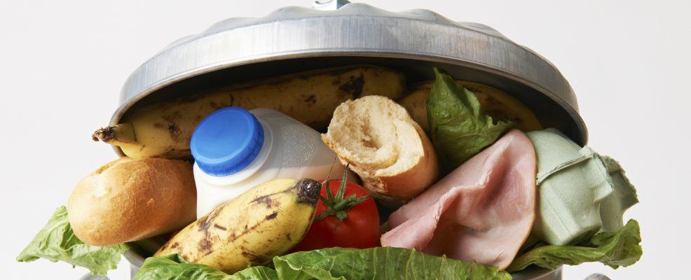 waste_food