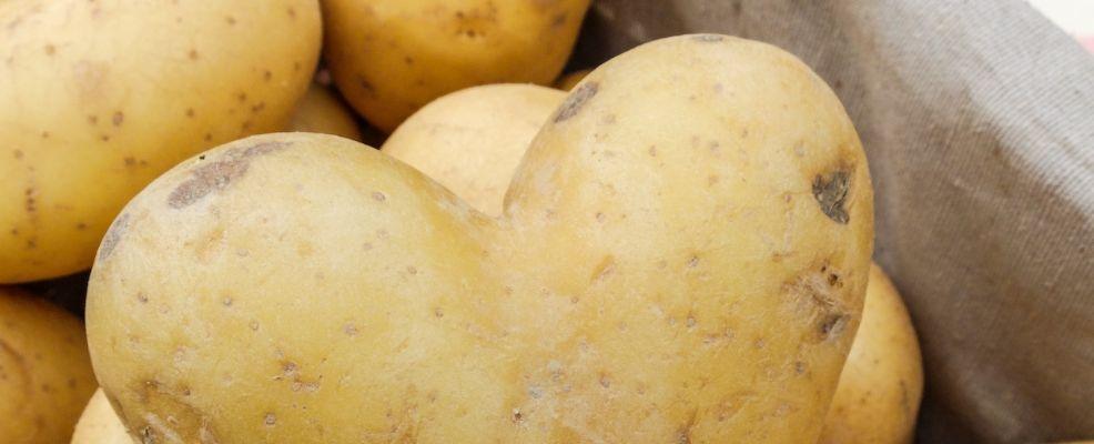 patate tossiche?