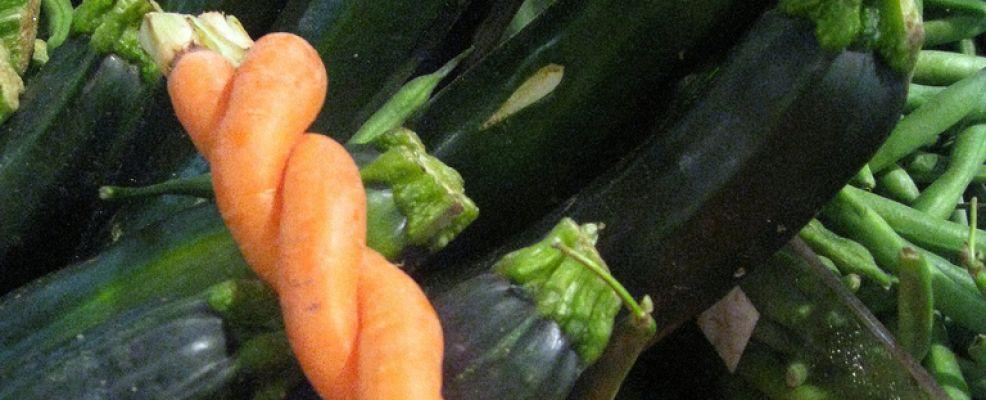 carote_spirale