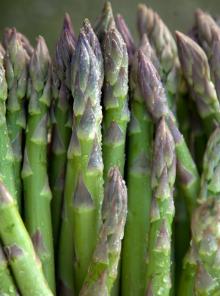 Tutto sugli asparagi: mini guida per conoscerli meglio