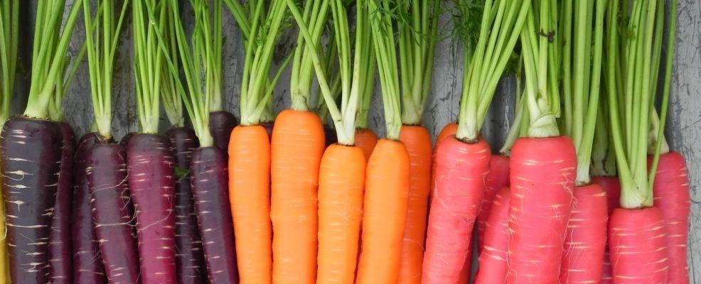 benefit-of-carrots-topipsfeed